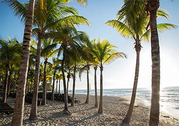 Sandos Caracol Eco Resort Riviera Maya, Mexico beach